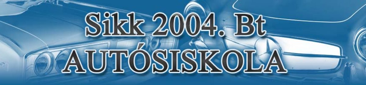 Sikk 2004